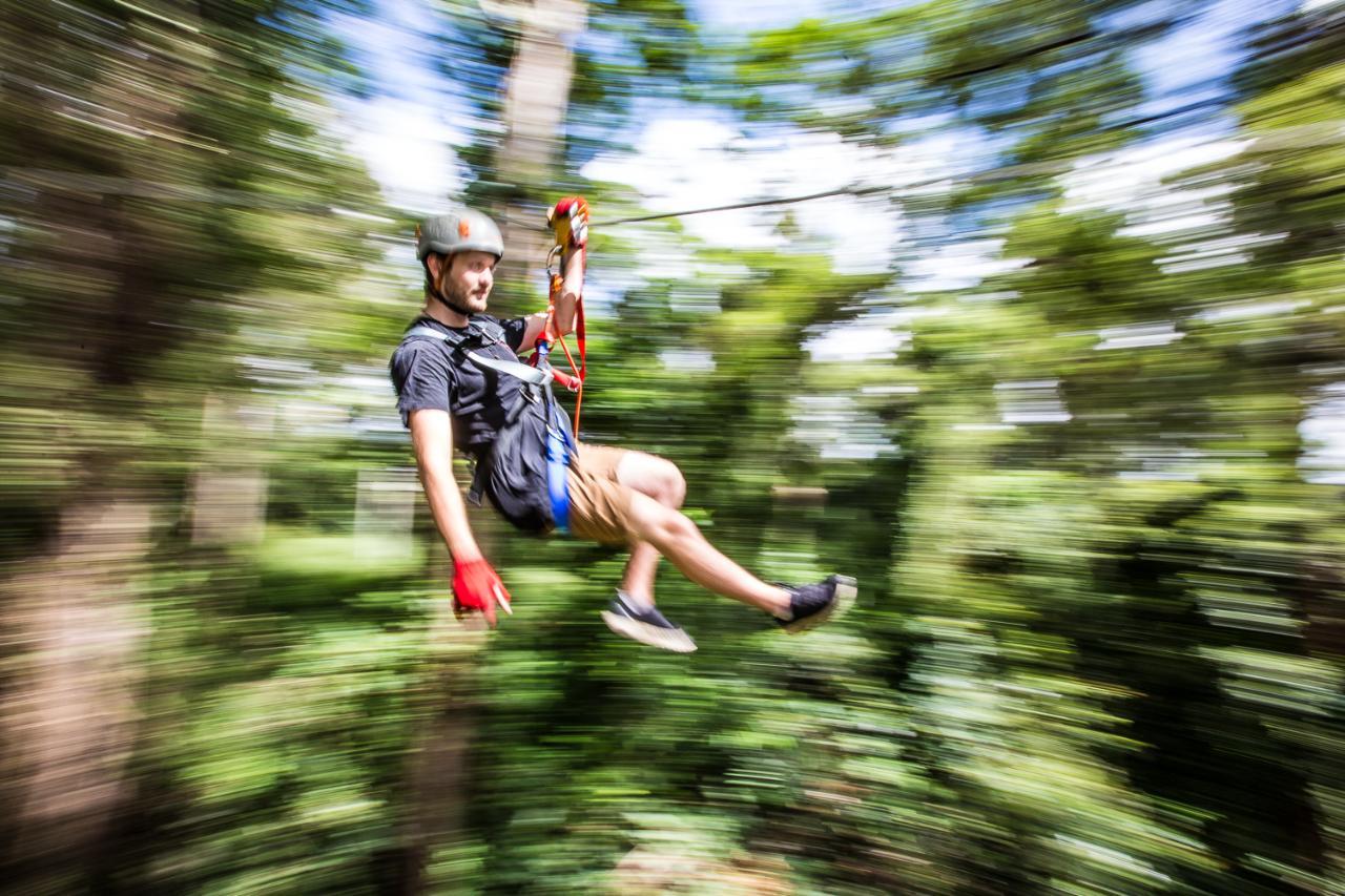 TreeTop Challenge – Sunshine Coast