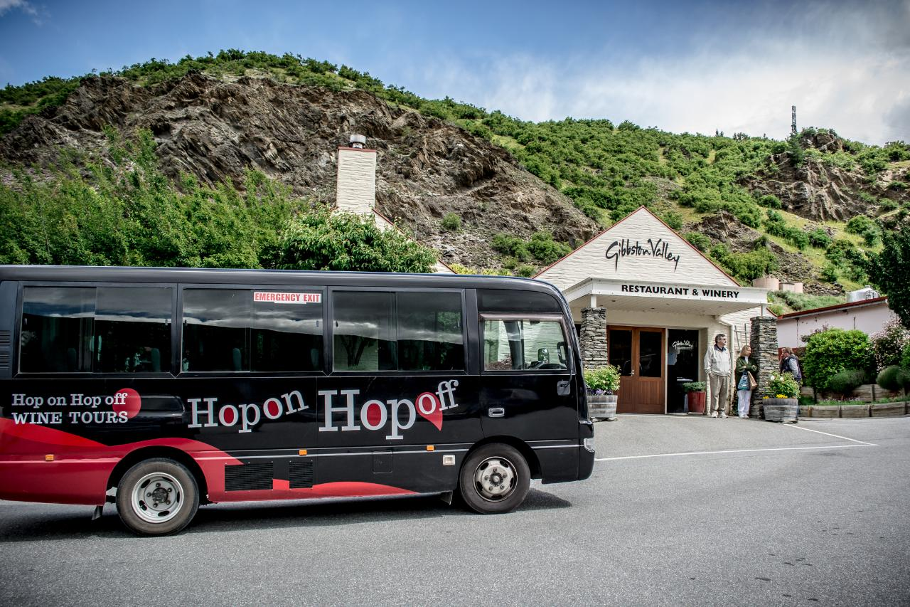Hop on Hop off Wine Tours Half Day - Queenstown