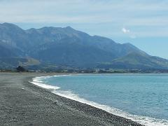Day Tour/Transfer to Kaikoura
