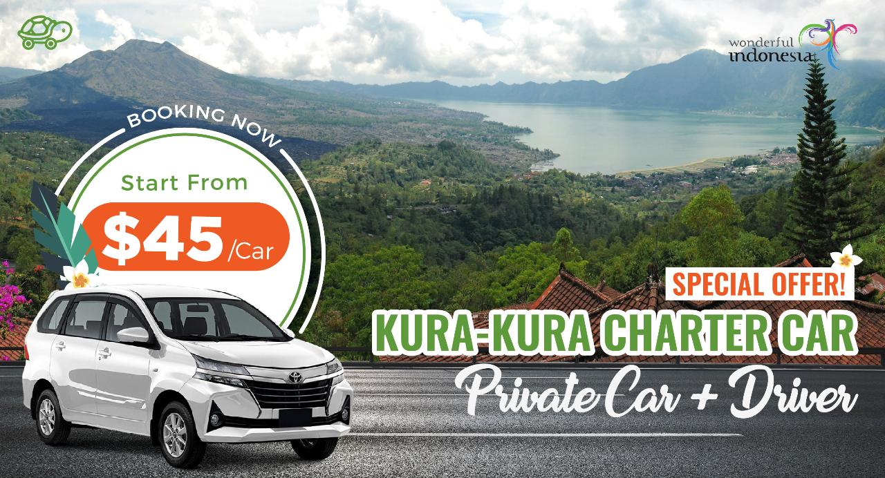 B : 8 Hours Charter Car from South Area to Kintamani