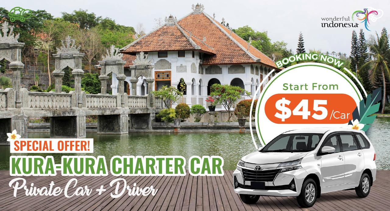 C : 10 Hours Charter Car from South Area to Lovina, Singaraja, Negara, Karangasem