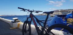 Hobart City Bike Tour - Private Tour