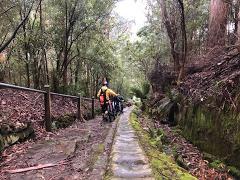 Hobart Mountain Bike - Private Tour