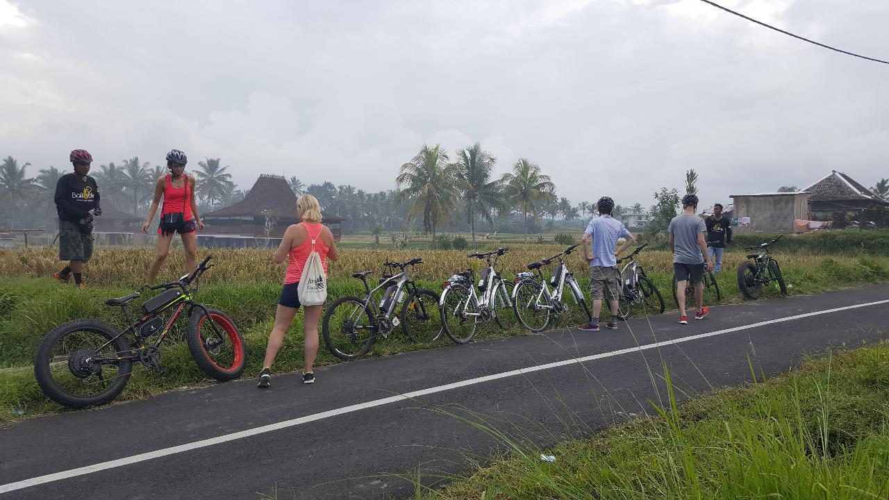 Ubud Electric Bike Tour to Tegallalang Rice Terraces