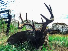 West Camp Kentucky 5 Day 6 Night Rut Bow Hunt