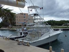 1/2 Day - 38' Luhrs - Afternoon