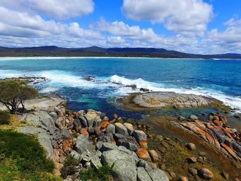 The Gardens Explorer Tasmania Australia