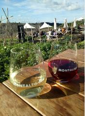 Mornington Peninsula Grand  Winery Tour