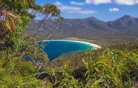 Freycinet National Park Pioneer – Full Day Tasmania Australia