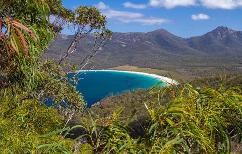 Freycinet National Park Pioneer – Full Day Tasmania Australia