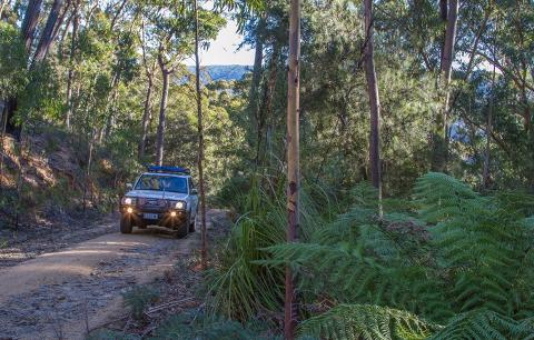 Coastal Mountain Adventurer – Half Day Tasmania Australia