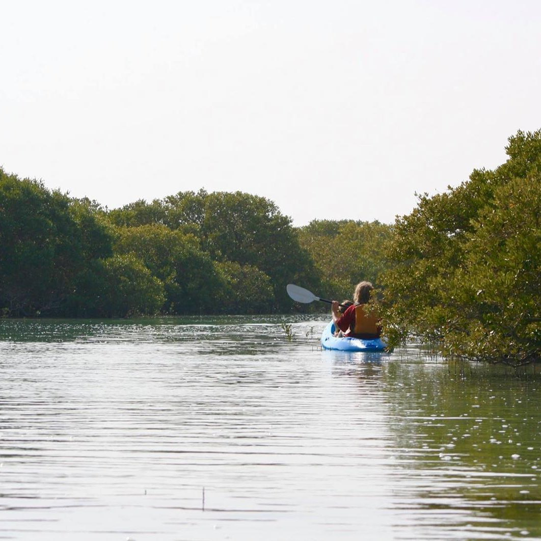 ## Kayaking in the Purple Island