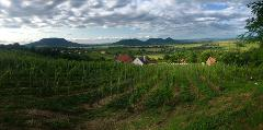 Private Wine Tour to Somló & Northern Balaton
