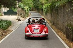 What When Wine by VW Beetle | English