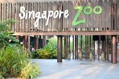 Singapore Zoo Tours