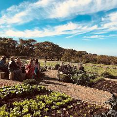 Vines of the Bellarine - Gourmet Traveller Tour