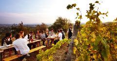 Vines of the Bellarine - Gourmet Traveller Tour