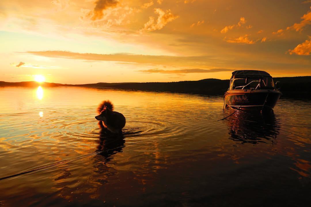 Visit Icehotel by boat along the national river - Torne river (JUNE-SEPTEMBER)