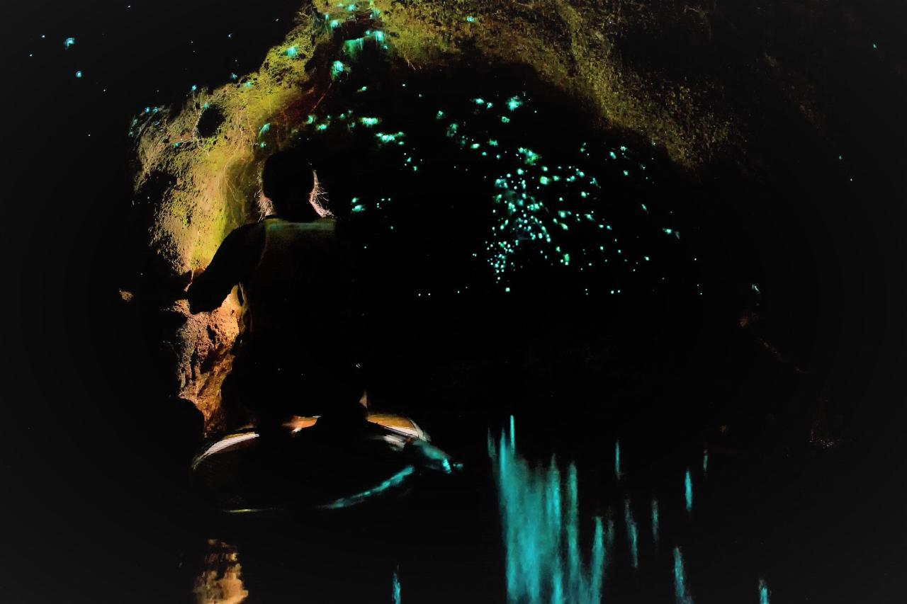 Glow Worm Paddle-board and Hot Pools
