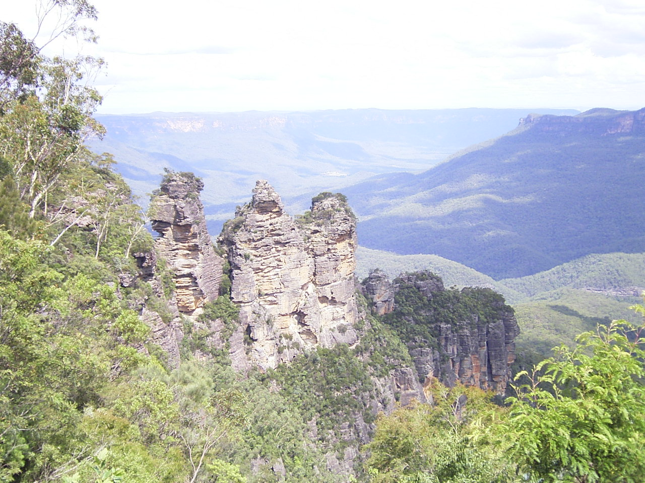 "Blue Mountains "" No Lunch"" Day Tour  WNL"