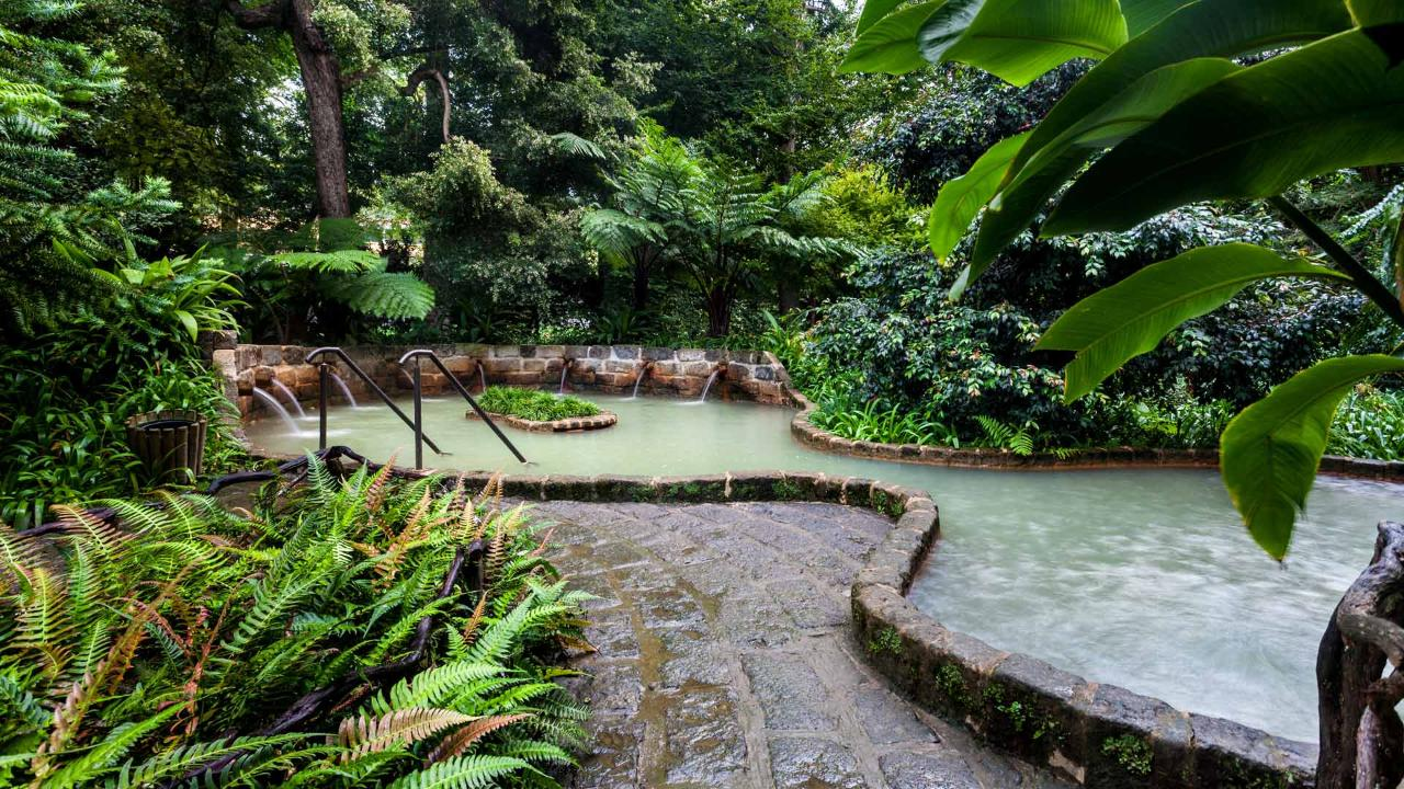 Furnas HotSprings & Botanic Garden Tour