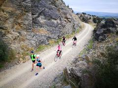 Central Otago Rail Trail Highlights Trail Run