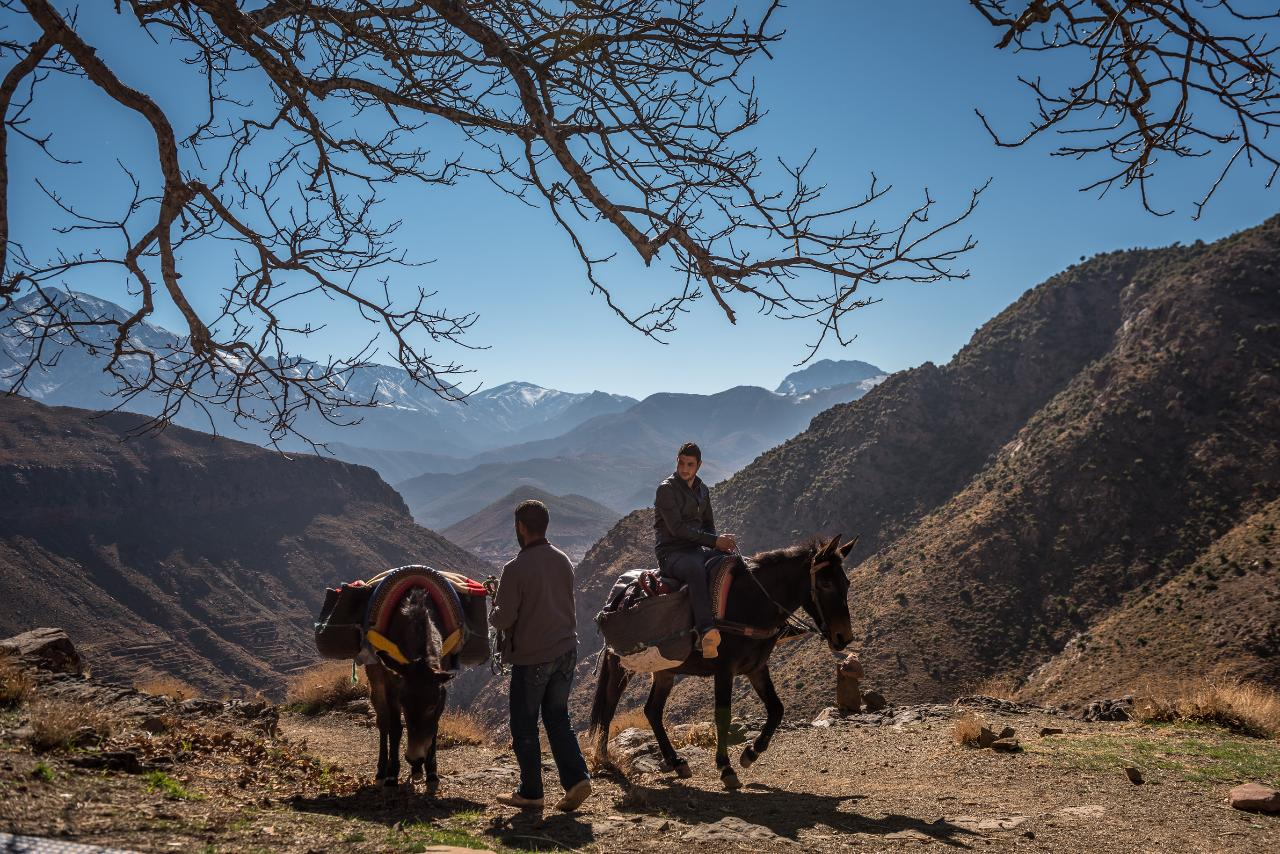 Day Trip by Foot in Atlas Mountains Ourika * Private