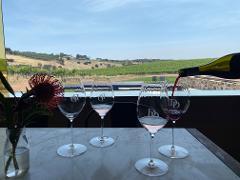 Guided Wine Flight inside the Tasting Pod