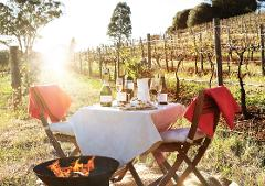 Private Mystery Vineyard Experience