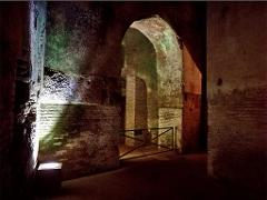 Domus Aurea Underground Tour: With Colosseum and Roman Forum