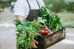 Harvest Lunch Series - Meet the Farmer August 18th