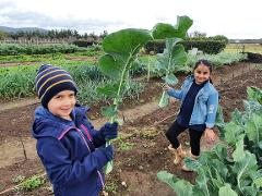 Winter School Holidays - Mini Growers Family Fun