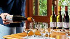 30 Minute Wine Experience