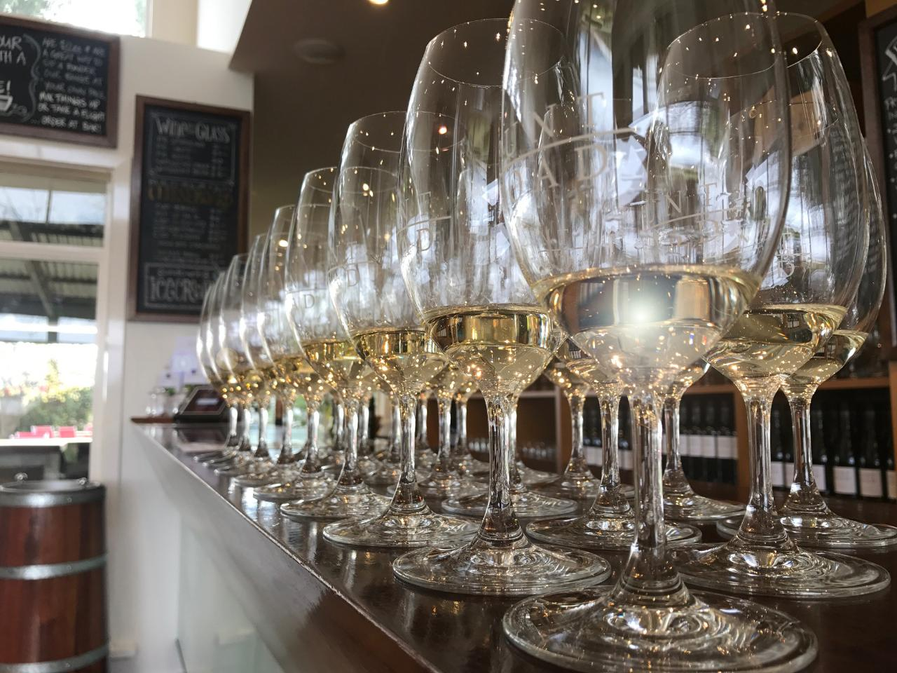 Punt Road Wines - Cellar Door Tasting Session - Medium Groups (8 - 20 guests)
