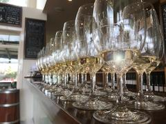 Punt Road Wines - Cellar Door Tasting Session - Medium Groups (8 - 24 guests)