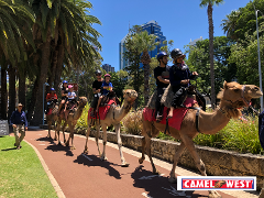 Gift voucher - Riverside & Elizabeth Quay Camel Riding Tour (Child 5 -15yo)