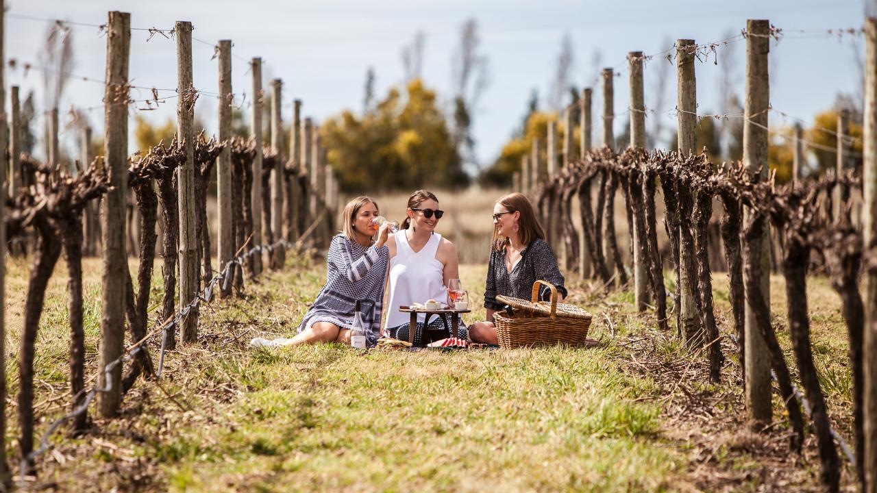 Picnic Amongst the Vines