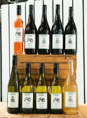 Vincentia Cellar door Guided wine tasting