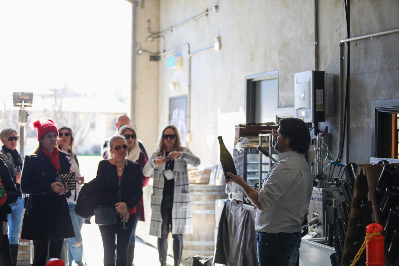 Sparkling wine demonstration and wine tasting