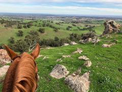 Ride the Range - BYO Horse