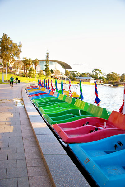 Paddleboat on the Torrens