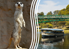 Popeye River Cruise & Adelaide Zoo Admission