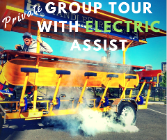 Private Group Tour - Electric Assist (up to 16 riders)