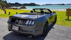 """V8 ROGUE ESCAPE WITH WINERY LUNCH"" 5.5 Hour Mustang Private Tour"