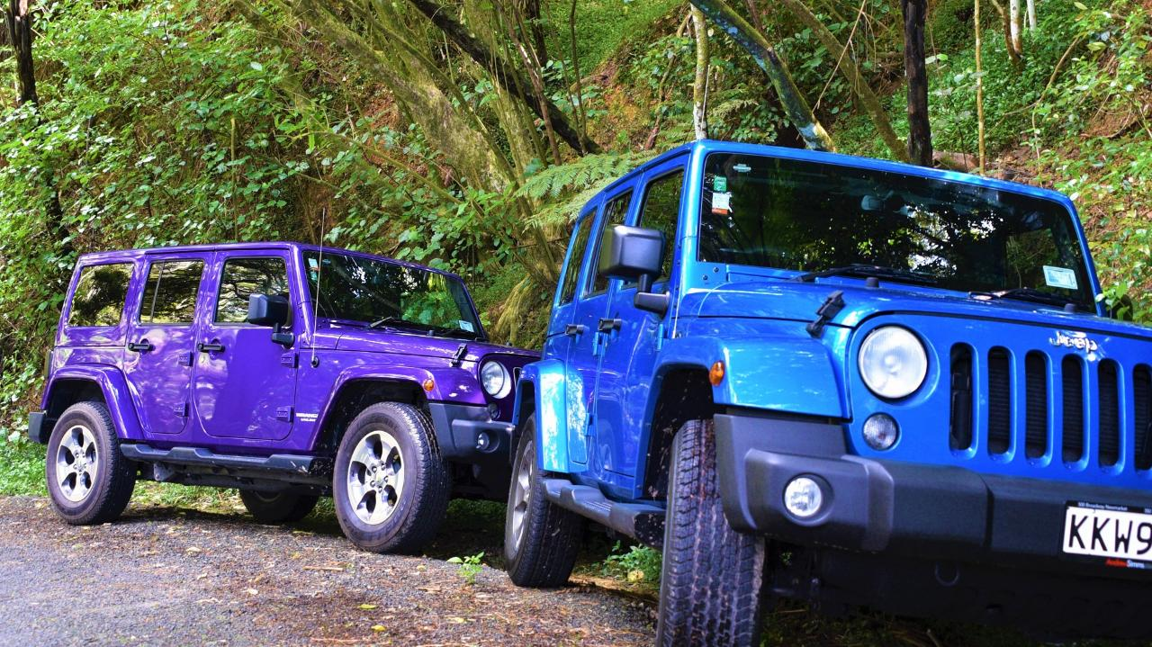 """KAURI CAPER WITH WINERY LUNCH"" 5 Hour Private Jeep Tour"