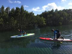 Private SUP Lesson and Tour