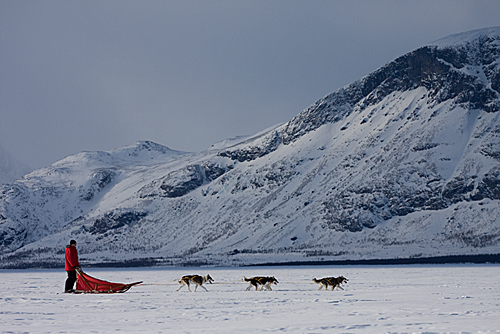 With dog sled to the gate of Sarek National Park