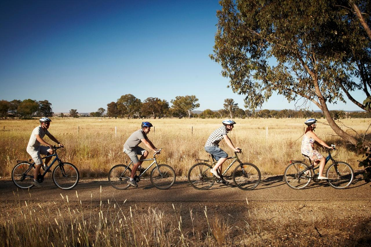 Beechworth cycle downhill - self guided