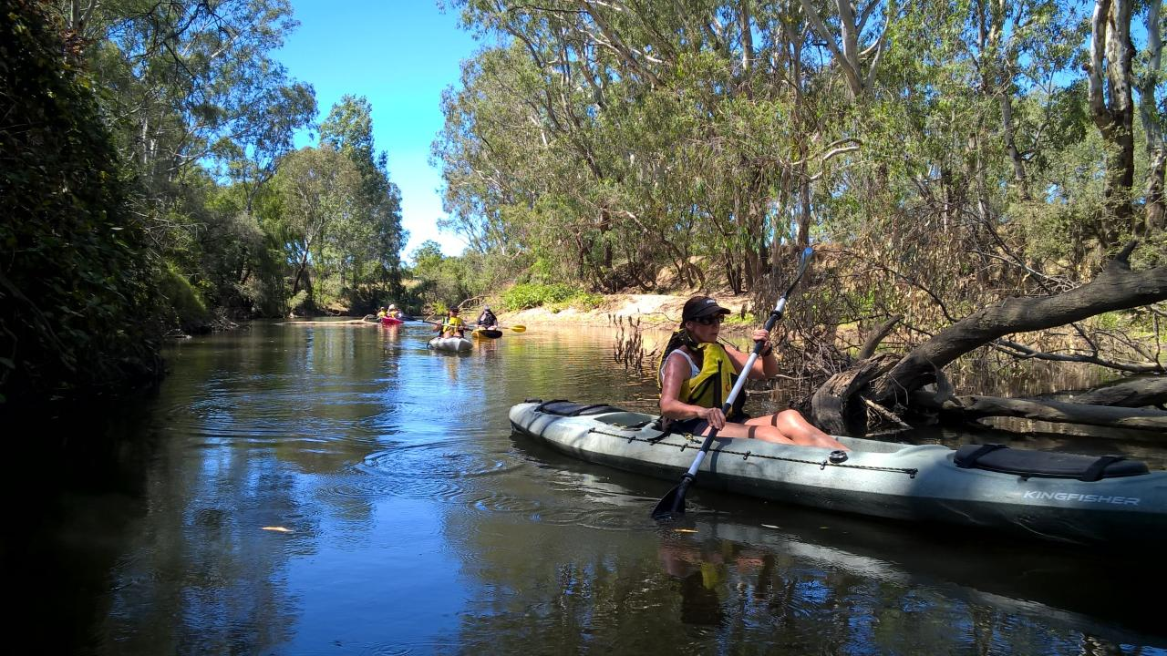 Kayak the Ovens River (Billabongs Launch)