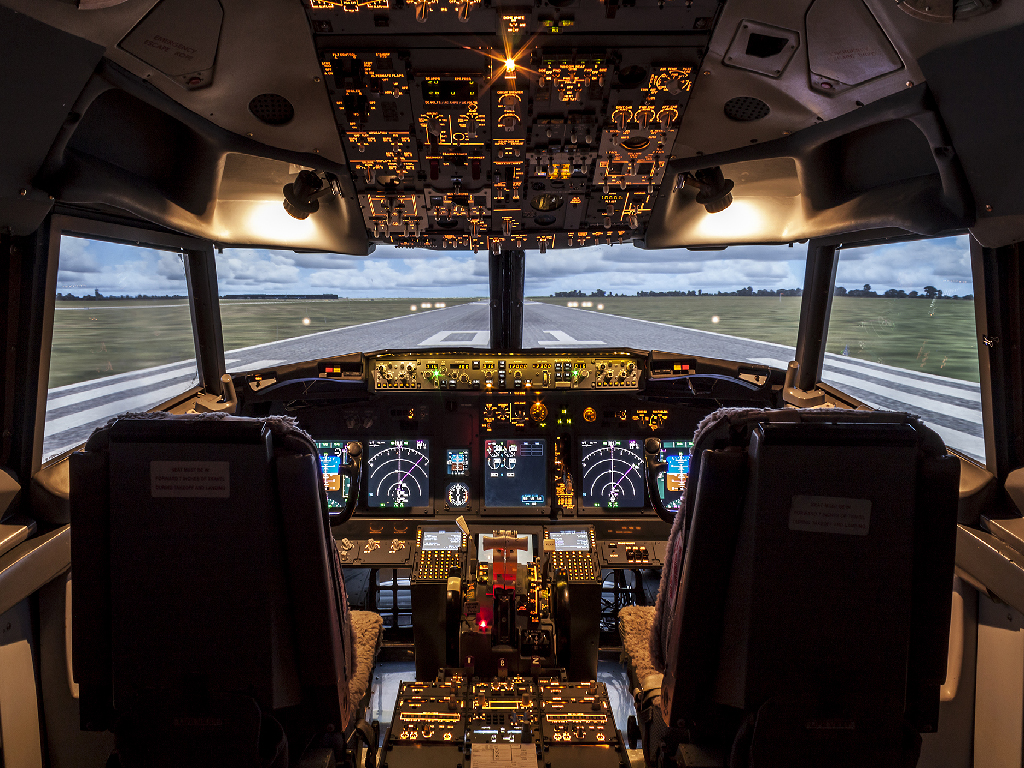 Jet Airliner (737) Experience 60 minutes